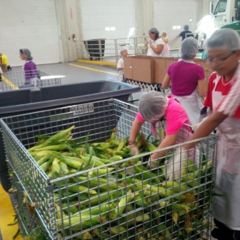 volunteerism, group activities, life lessons